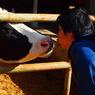 OLYMPUS E-620で撮影した動物(愛は人間と牛という境界線を越えました。)の写真(画像)