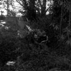 その他のカメラメーカー Ikonta6 (520/16)で撮影した風景(2011撮り初め #1)の写真(画像)
