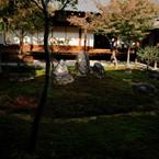 SONY DSLR-A900で撮影した風景(侘寂)の写真(画像)