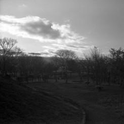 その他のカメラメーカー Ikonta6 (520/16)で撮影した風景(冬の彼方)の写真(画像)