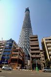 そびえたつ東京スカイツリー