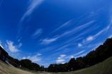 本日の気象観測@長居植物園
