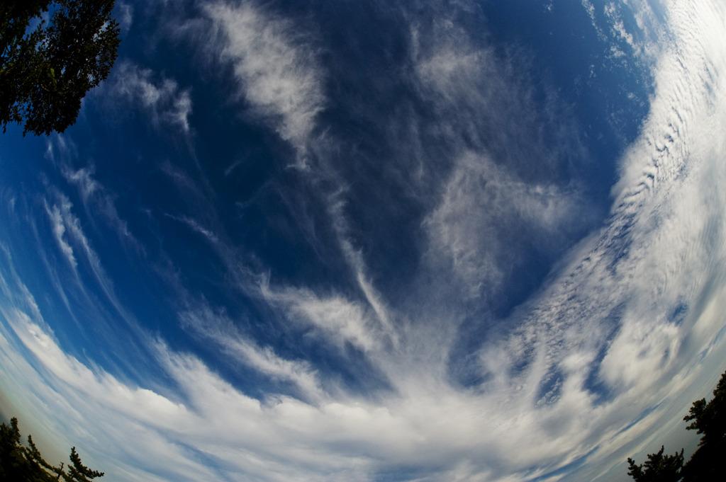 本日の気象観測@六甲山