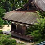 CANON Canon EOS 5D Mark IIで撮影した建物(300 years old)の写真(画像)