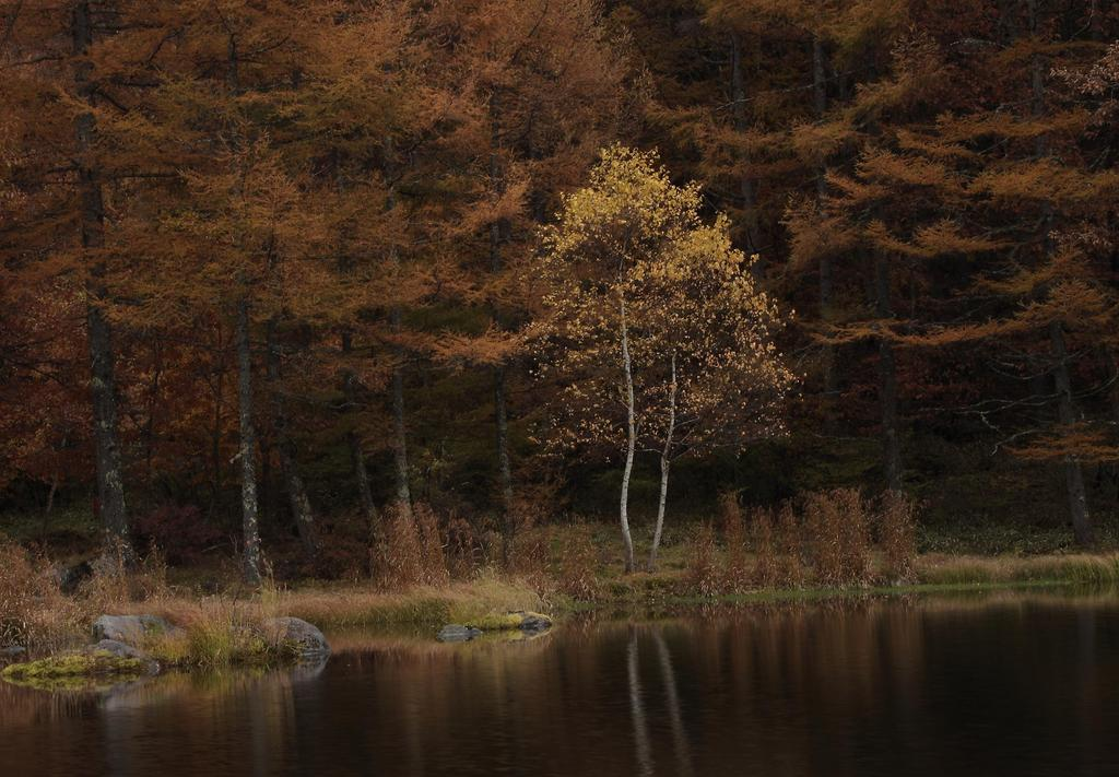 lake 15