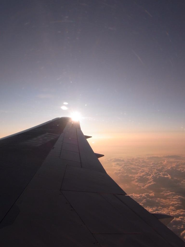 翼の向こう側