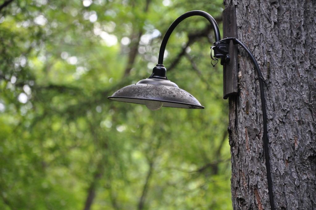 古びた電灯