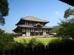 東大寺金堂~森囲み風~