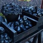 OLYMPUS E-520で撮影したインテリア・オブジェクト(鉄の野菜(バーゼル))の写真(画像)