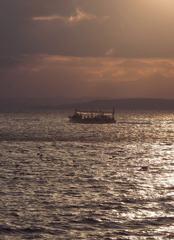 函館湾を行く烏賊釣船