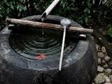 手水鉢(九品仏・浄真寺)
