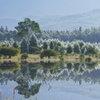小田代湖と白樺、その2