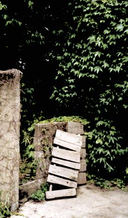 夏の庭へ・・・