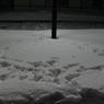 CANON Canon EOS Kiss X3で撮影した風景(足跡。)の写真(画像)