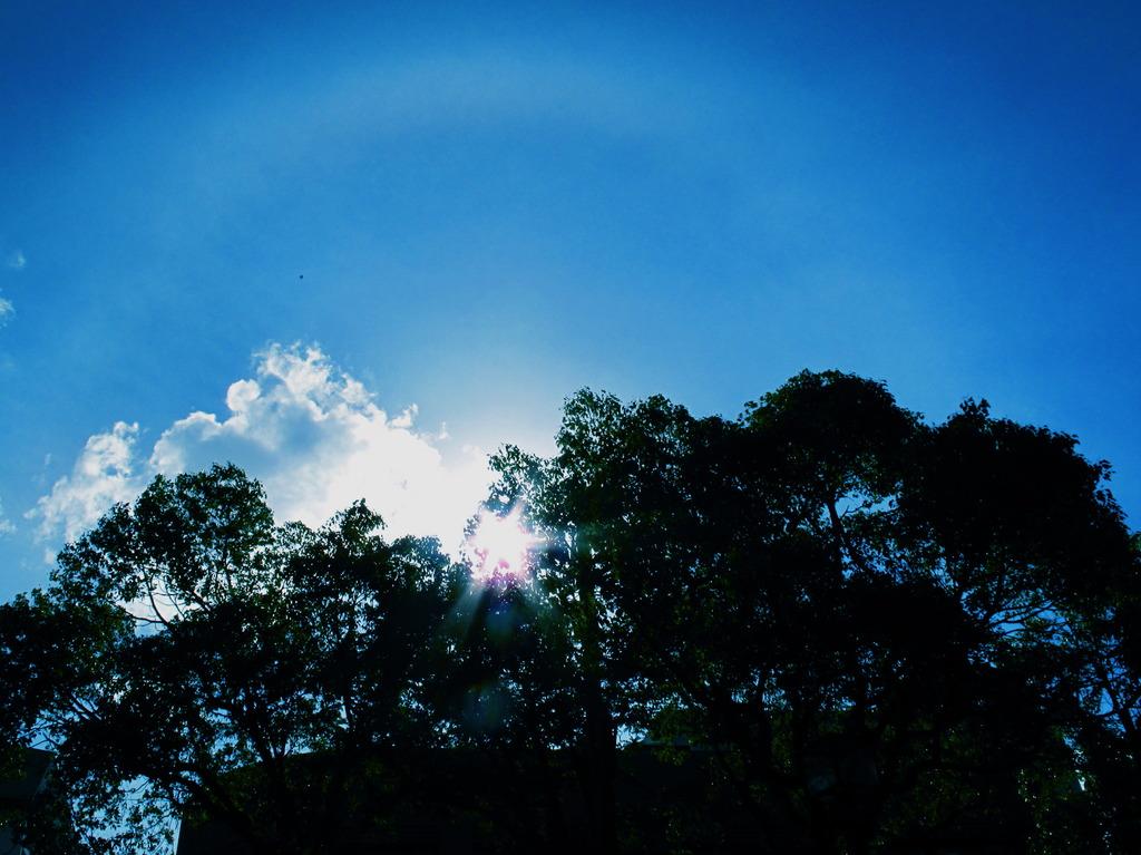 空、雲、影