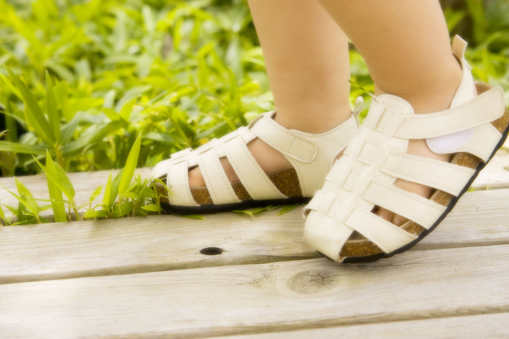 夏の光の中を歩く