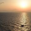 黄金の相模湾