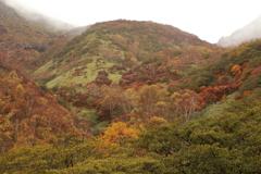 那須岳の色づき