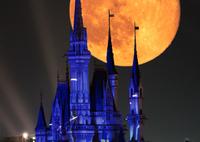 RICOH IMAGING PENTAX K-1で撮影した(月とシンデレラ城)の写真(画像)