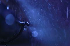 雨樋に、お水