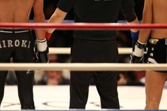 boxers #12