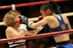 boxers #6