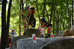 Climbers #12