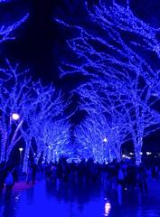 青一色の世界
