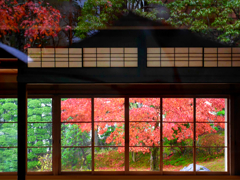 窓越しの紅葉