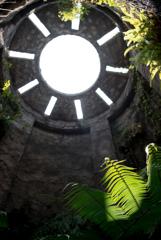 南国の植物園
