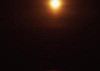 ROLLEI Rolleiflex SL66で撮影した(海を渡る月)の写真(画像)