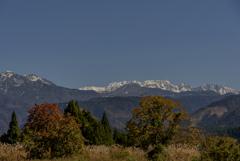 冠雪の立山と紅葉