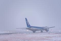 雪のフライト