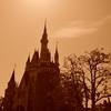太陽に輝くシンデレラ城