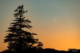 夕暮れ、夕焼け、飛行機ひとつ。
