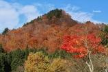 里山は紅葉盛り