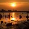 引き潮の川に映る夕陽