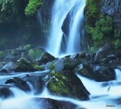 苔と悠久の清流(吐竜の滝)