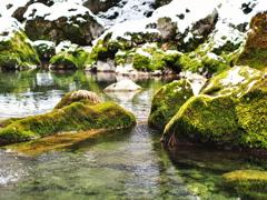 円原川冬景色 3