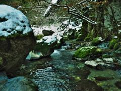 円原川冬景色 2