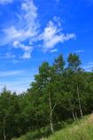 高原に吹き渡る心地よい風