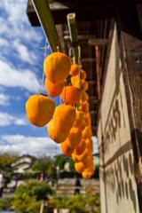 干し柿とその影(1)
