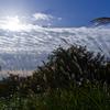 雲も秋の装い(2)