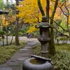 紅葉庭園への誘い