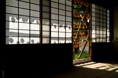 干し柿とその影(2)