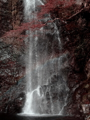 晩秋の箕面大滝