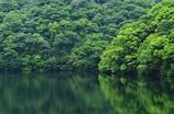 新緑の布引ダム湖