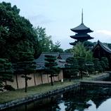 夏の京都風情