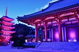 ブルーモーメントで幕開けの東長寺本堂と五重の塔