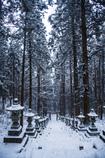 ひっそりと深雪に佇む石灯篭たち